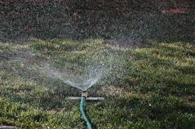 lawn care tip 14 water infrequently and deeply scienturfic sod