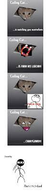 Ceiling Cat Meme - ceiling cat with memes