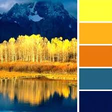 yellow color schemes blue and yellow color palette bright yellow blue and orange color
