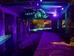 waller creek light show events atmtx