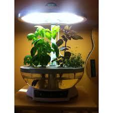 hydroponics herb garden kitchen picgit com