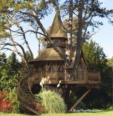 Cool Tree Houses 548 Best Tree Houses Images On Pinterest Amazing Tree House