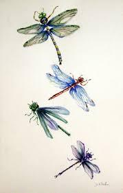 726 best tags butterflies dragonflies images on pinterest