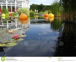 Botanical Garden In The Bronx Waterlily Pond In Bronx Botanical Garden Stock Image Image Of
