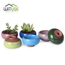 popular cute pots succulent buy cheap cute pots succulent lots