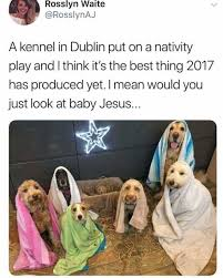 Mean Jesus Meme - dopl3r com memes rosslyn waite rosslynaj a kennel in dublin put