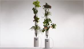 brave new gear u2014 grow fresh vegetables year round with this