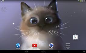 peper kitten android apps on google play