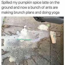 Pumpkin Spice Latte Meme - 18 pumpkin spice latte memes awkward com