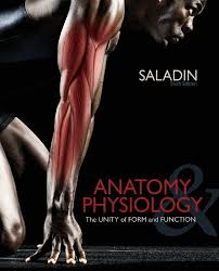 Human Anatomy And Physiology Textbook Online Anatomy U0026 Physiology 6th Edition Pdf Download For Free By