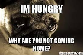 Depressed Pug Meme - fancy depressed pug meme sad hungry pug 80 skiparty wallpaper
