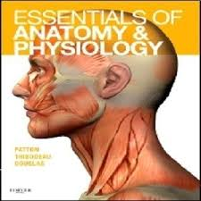 Anatomy And Physiology Tests With Answers The 25 Best Anatomy And Physiology Test Ideas On Pinterest