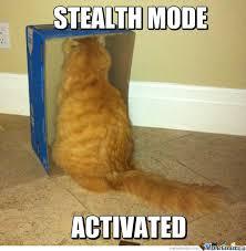 Invisible Cat Memes - phish net funny cat memes