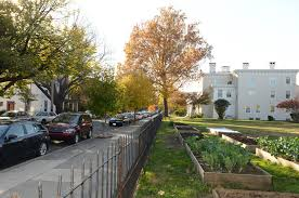 Urban Gardening Philadelphia - drexel research team connects urban design to public health now