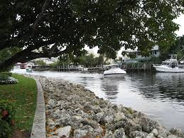 apartments for rent in fort lauderdale fl hotpads