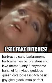 Bitches Love Meme - 25 best memes about barbra streisand queen bitch love and