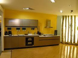 best high gloss kitchen cabinets u2014 tedx designs