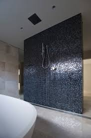 Open Shower Bathroom Design 38 Best Showers Feature Walls Images On Pinterest Bathroom Ideas