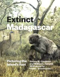 extinct madagascar picturing the island u0027s past goodman jungers