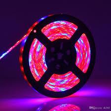 5050 led light strip led grow lamp 5050 led flexible strip tape light 5 1 5 red 1 blue