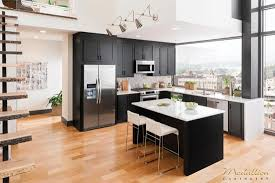 modern black kitchen cabinets create a modern kitchen with kitchen cabinets