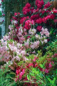 Inside Garden by Artificial Plants And Trees Ile Ilgili Pinterest U0027teki En Iyi 25