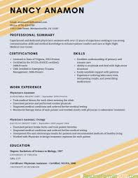 Simple Resume Templates Recommended Resume Format Resume For Your Job Application