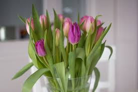 Sympathy Flowers Message - how to write a sympathy message 3 things to consider 2nd story