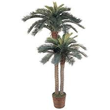 two 6 coconut artificial tropical palm trees