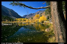 picture photo pond trees fall colors lundy canyon inyo