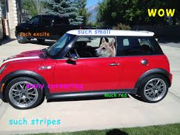 Doge Meme Car - doge meme page 5