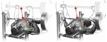 Close Grip Bench Press Benefits 100 Closed Grip Bench Press Lying Triceps Extension To