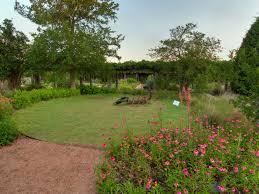 texas native plants list itineraries lady bird johnson wildflower center