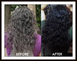 okra bhindi hair treatment and conditioner perfect skin care