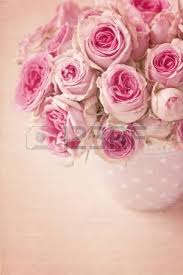 pink ranunculus flowers and letters stock photo picture and