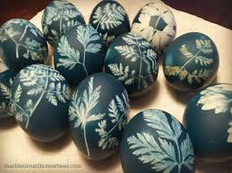 Decorating Easter Eggs With Leaves by Dyeing Eggs With A Leafy Look Grow Northwest