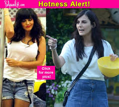 Top Controversies Of Former Bigg Boss Contestant Mandana - right from mandana karimi rochelle rao to sunny leone take a look