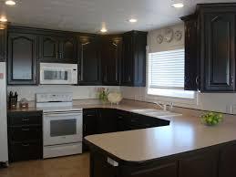 update golden oak kitchen cabinets monsterlune