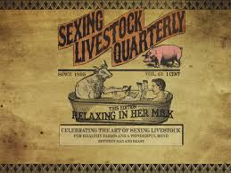red dead redemption game wallpapers sexing livestock quarterly red dead redemption pinterest