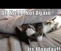 Mondays Meme - monday meme images pictures photos images and pics for facebook