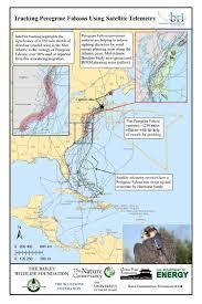 Waterfowl Migration Map Raptors Of Block Island Biodiversity Research Institute