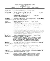 free chronological resume template resume german resume template chef sle personal for a executive