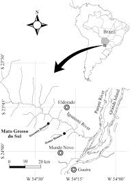Parana River Map Chromosomal Characteristics Of Rdna In A Conserved Karyotype Of