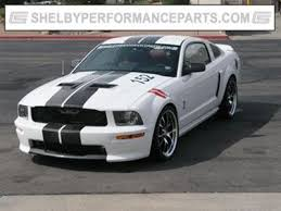 mustang windshield decal team shelby windshield lettering silver team shelby