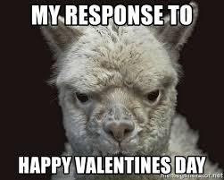 my response to happy valentines day angry alpacas meme generator
