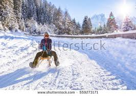 sledding stock images royalty free images vectors