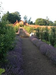 tea room open every day picture of sugnall walled kitchen garden