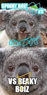 Koala Meme - meme maker koala generator