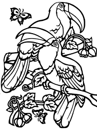 toucan sam coloring page coloring pages kids