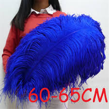 Where To Buy Ostrich Feathers For Centerpieces by Compare Prices On Ostrich Feathers Centerpieces Online Shopping